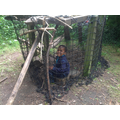 This week they built another den with items they found.