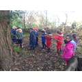 Worked together to move large branches.