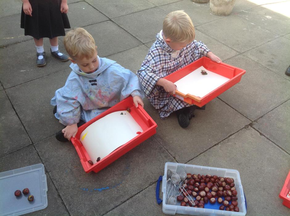 We tipped our trays to make the conker roll.
