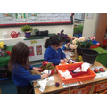 Wrapping beautiful bouquet of flowers using learnt knot tying skills.