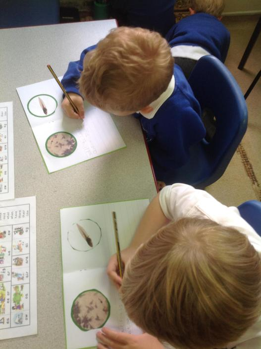 Writing our own books about the frog life cycle.