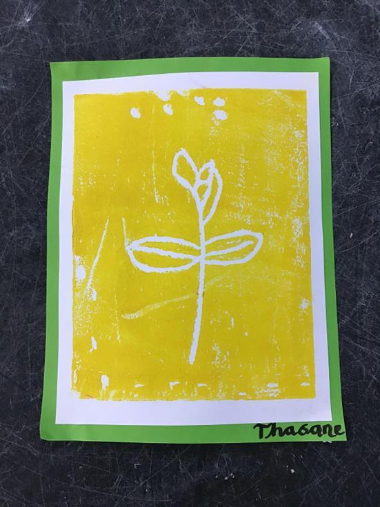 Thasane - Willow Class