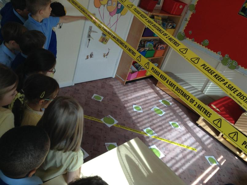 Introducing the book `Tuesday` - A Lily pad crime scene