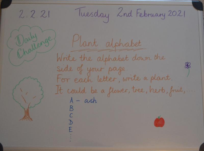 Tuesday 2nd February