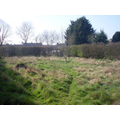 School Meadow