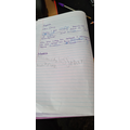 Leila-Jayde's diary entry- don't forget your best presentation Leila.