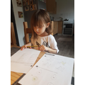 Emilia completing her Maths.