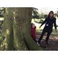 Tree hugging!