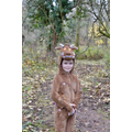 Here comes the Gruffalo (Thank you Liam)