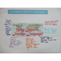Reflecting on why languages are important