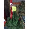 What a helpful elf!