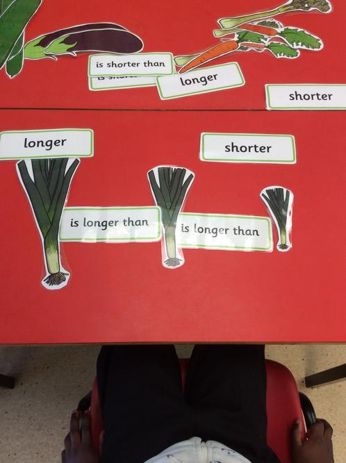 We can sort vegetables by size.