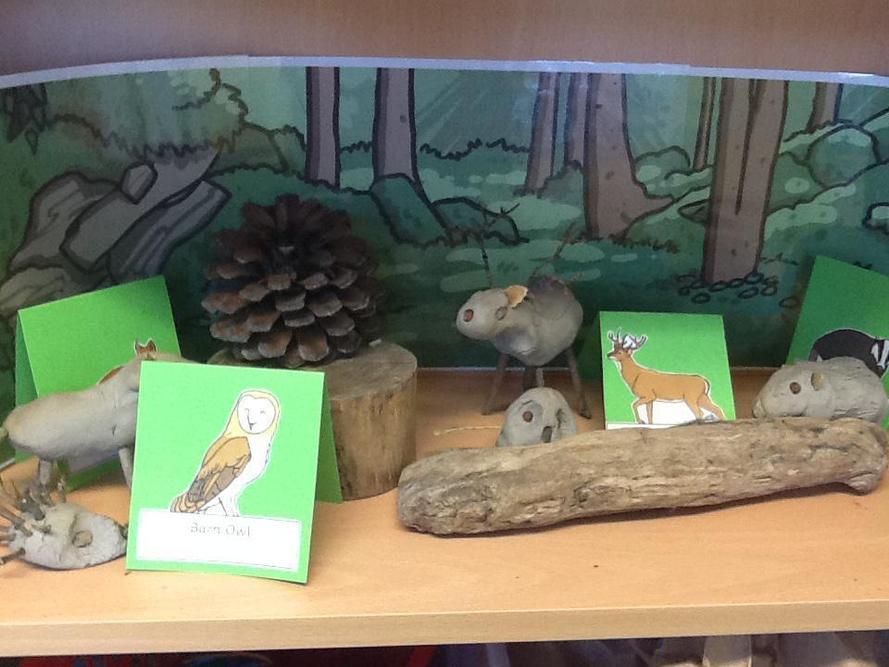 Woodland animals made by children in 4S.