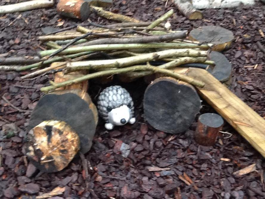 This will keep any Hedgehog warm and dry.