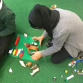 The children were making houses for the animals.