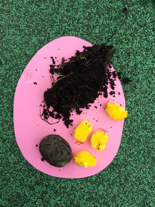 Eggs decorated with natural materials.