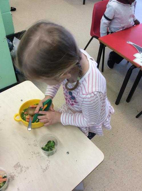 Exploring frozen vegetables.
