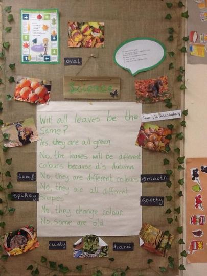 Year 1 - Seasonal changes