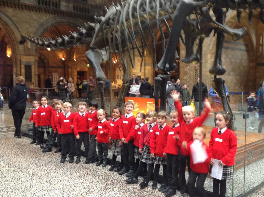 A class trip to the Natural History Museum