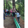 Low ropes course.