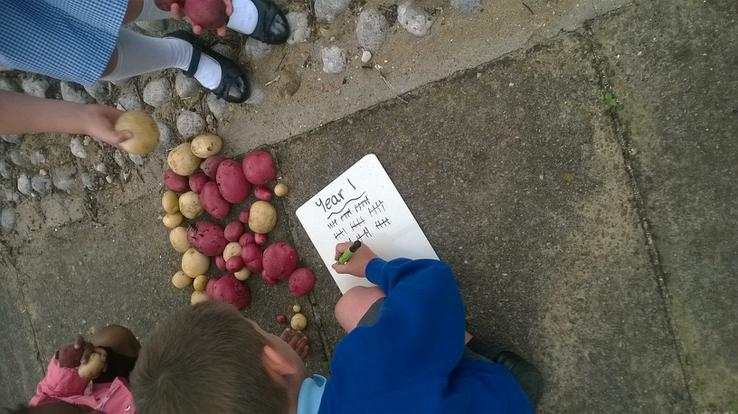 There were lots to count - a tally helped!