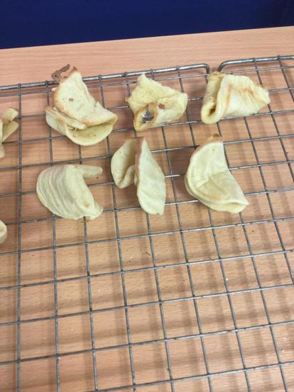 Tricky fortune cookies in Year 1