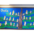We painted our very own owls.