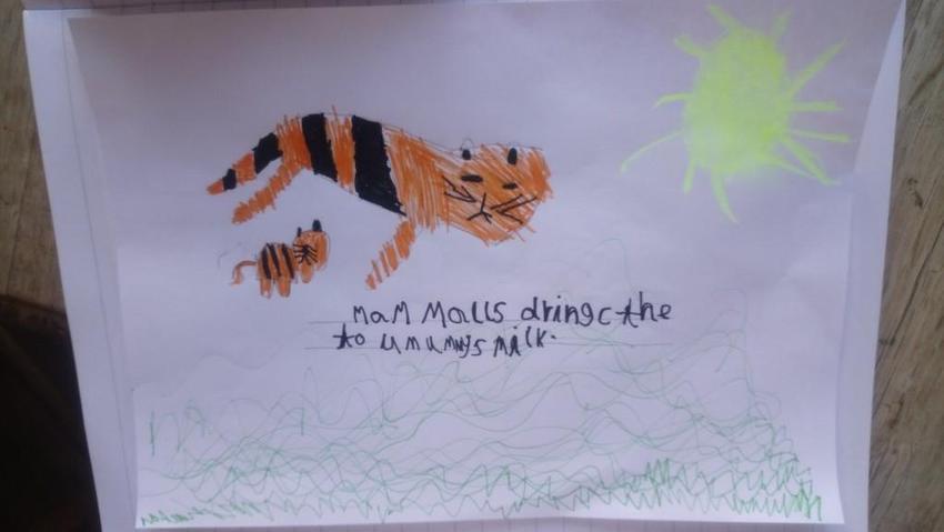 Tallulah's mammal poster