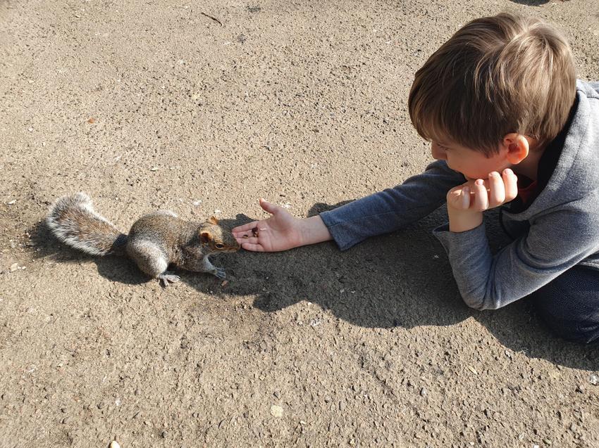 AC feeding the squirrels!
