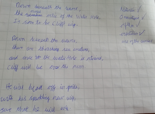 Can you find the ticked features in the poem?