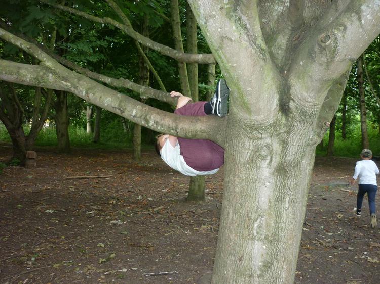 Just hanging!