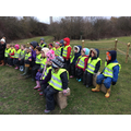 Pond dipping briefing
