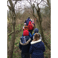 What can you hear and see on a nature walk?