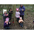 Making dens for animals