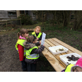 Investigating the pond findings