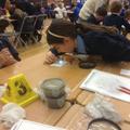 Detecting fibres
