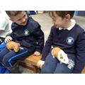 The guinea pigs felt funny.