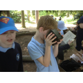 Looking at artefacts