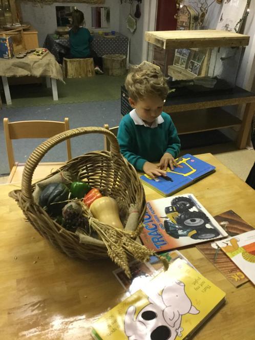 Exploring our Harvest basket