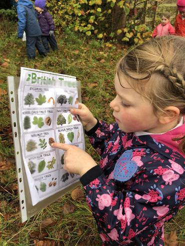 Learning to identify trees.