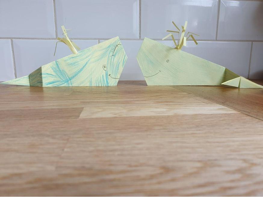 Ezmae's amazing origami whales