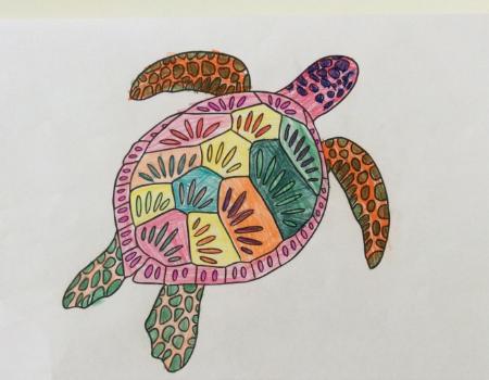 Zoe's super sea turtle colouring