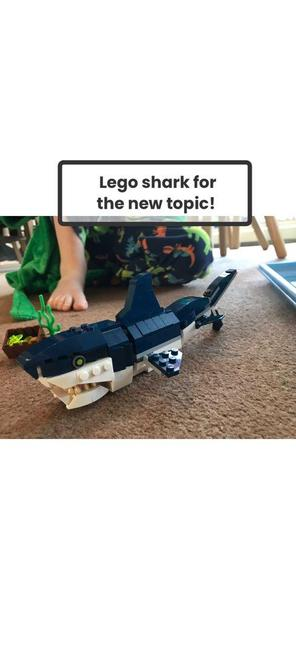 Abel made a lego shark!