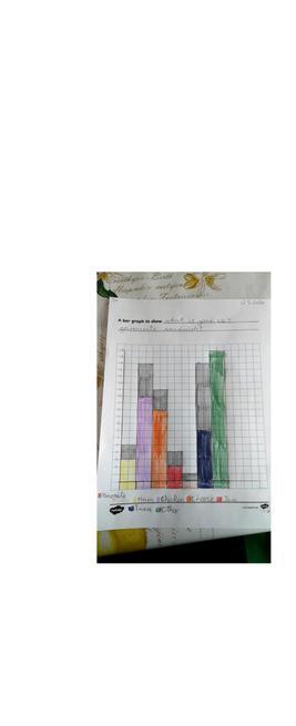 A beautiful bar graph by Megan.