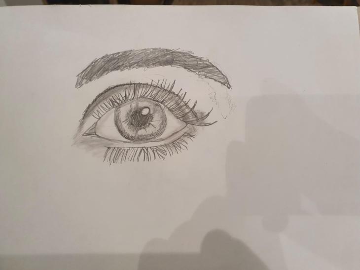 Owen's fantastic eye sketch