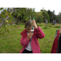 Using pooters to find invertebrates