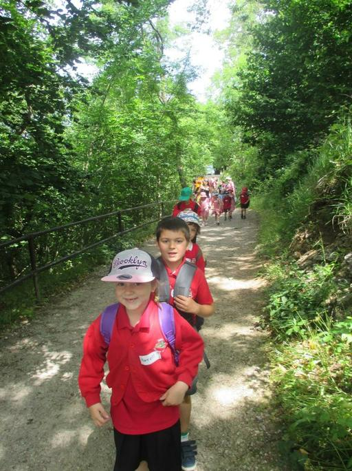 The start of the woodland walk