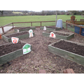 Veg beds are now ready for planting