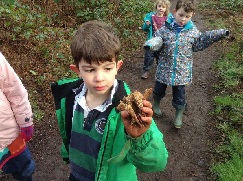 Oscar found pine cones the squirrels had eaten.