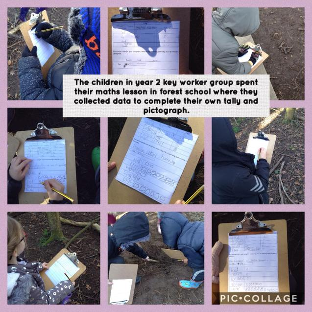 Maths lesson - Tally and pictograms in forest school